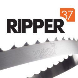 Piła taśmowa bimetalowa do drewna RIPPER37 BIMETAL 34×1,1mm 10/30 ROH